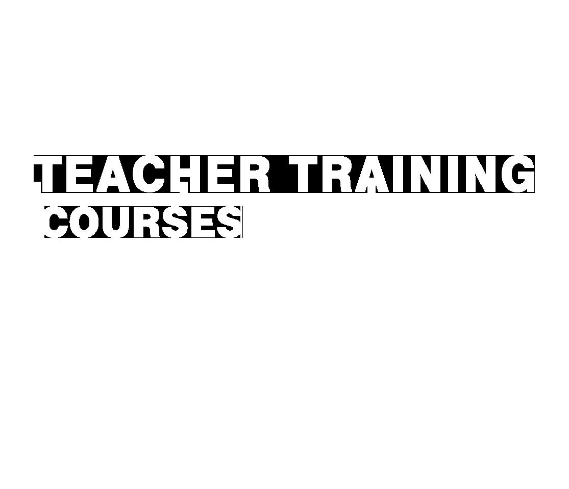 دوره های تربیت مدرس